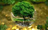 ekologija_121020_tw630