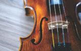 violina_201020_tw630